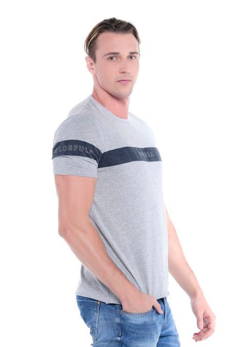 Camiseta-QUEST-Original-Fit-QUE112OU0049-42-Gris-Jaspe-2